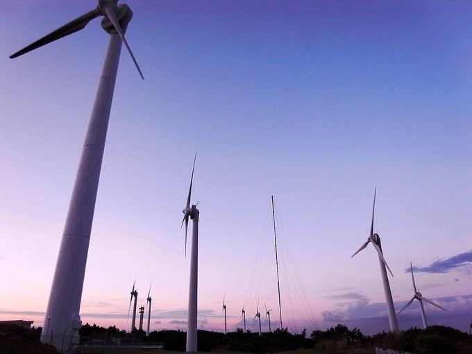 直径50mの巨大な風車
