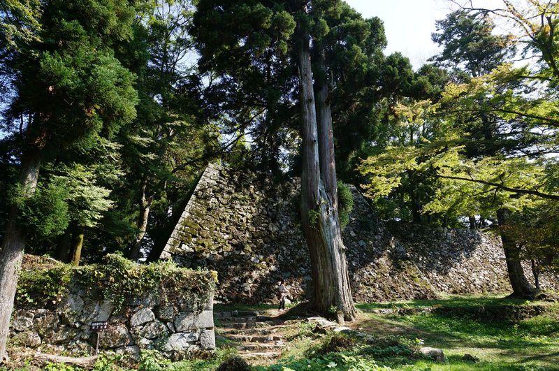 ポスト竹田城の最有力候補!?山上に築かれた戦国の巨大城砦跡 〜高取城(奈良県高取町)