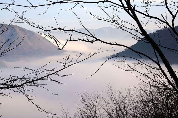 雲海を見るためには