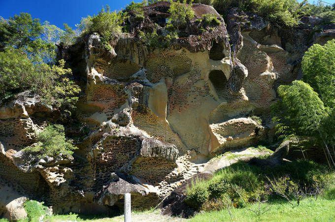 岩が浸食されてできた奇岩「虫喰岩」