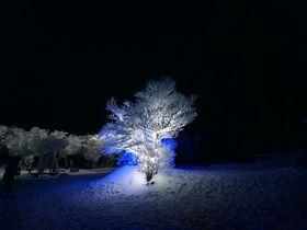 真冬に咲く白い氷の花 ~御在所HYOBAKUライトアップ(三重県菰野町)|三重県|トラベルjp<たびねす>