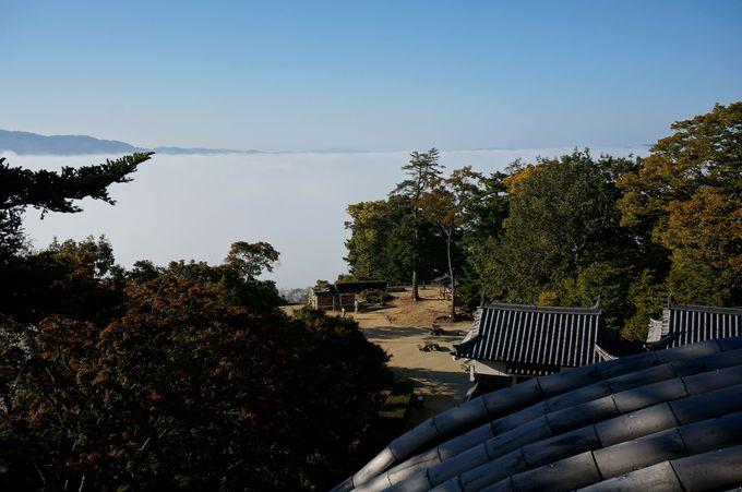城から見る雲海は…