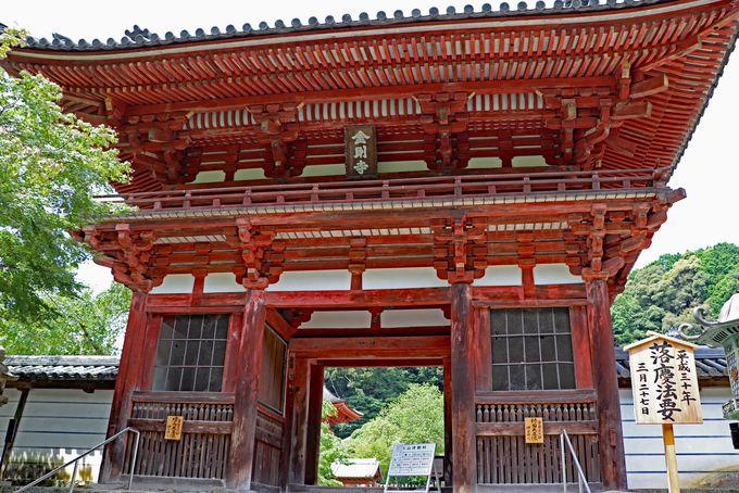 金堂リニューアル完了!大阪・奥河内の金剛寺は文化財の宝庫