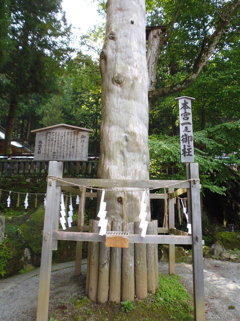 四本の御柱に護られる由緒正しき長野県「諏訪大社」、まずは本宮で参拝と御柱ラリー!