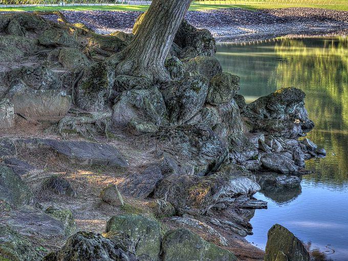 池もなく遣水もなき所に石をたつる事あり これを枯山水となづく