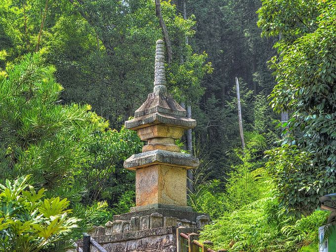 廃少菩提寺多宝塔 〜 珍しい石造の多宝塔