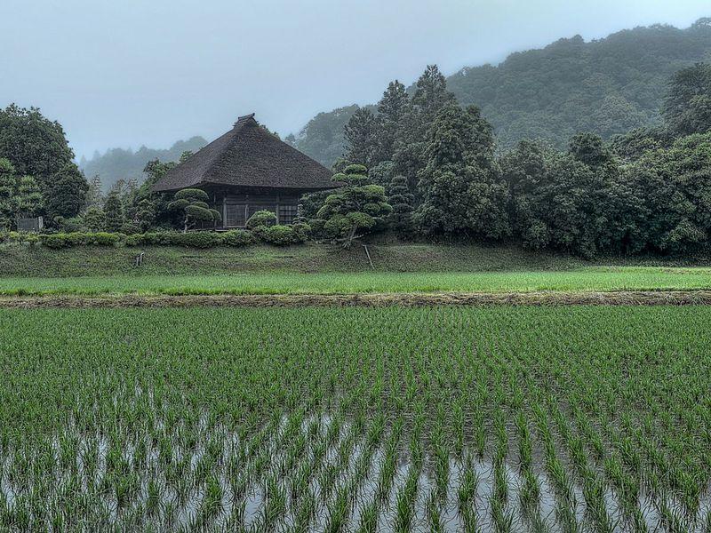 西願寺と鳳来寺 〜 田園風景と寺院建築の美しい市原市郊外へ