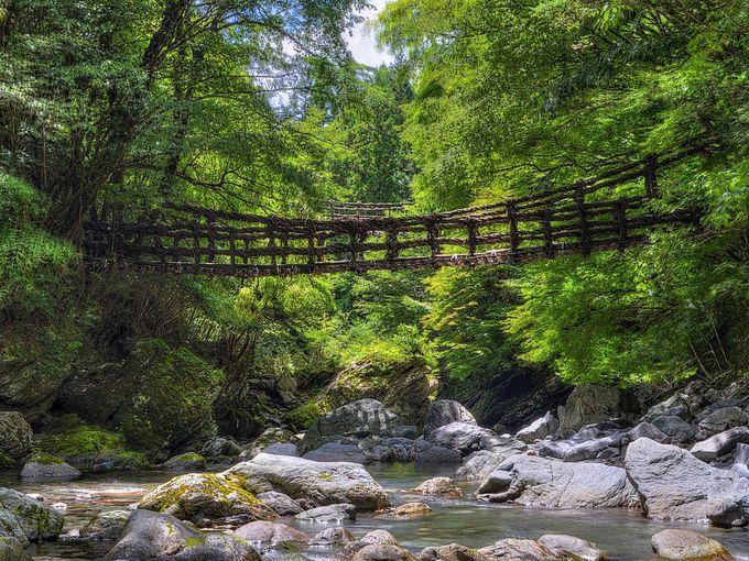 とびきりの秘境を感じたいなら奥祖谷の二重かずら橋へ