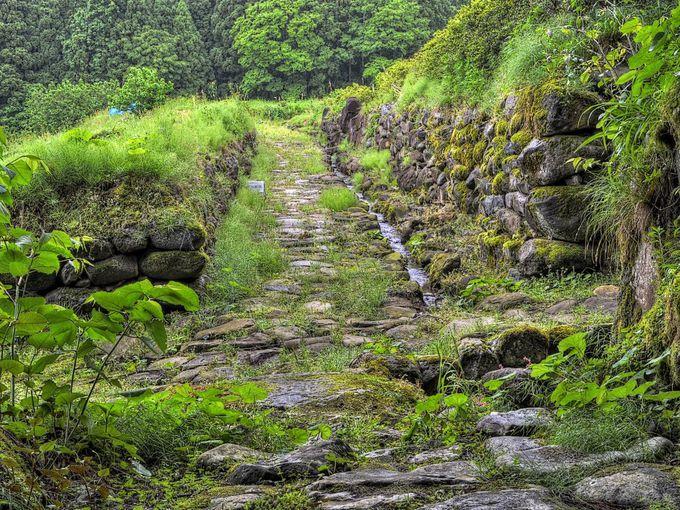 中世の石垣や石畳が発見された南谷遺跡
