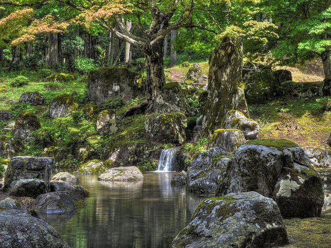 両地区とも必見の庭園あり 〜 一乗谷朝倉氏庭園と旧玄成院庭園