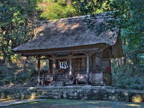栃木県益子町は中世社寺建築の宝庫!関東屈指の古建築の町へ|栃木県|トラベルjp<たびねす>