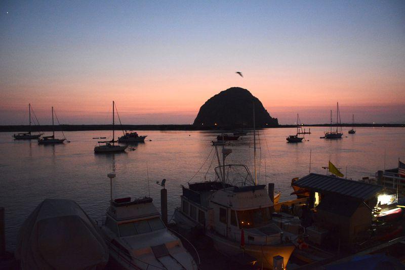 カリフォルニアの小さな港町 モロベイ でできる5つの体験 アメリカ