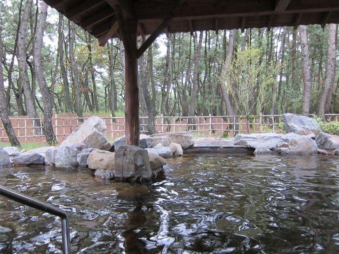 松林に囲まれた露天風呂で寛ぐ