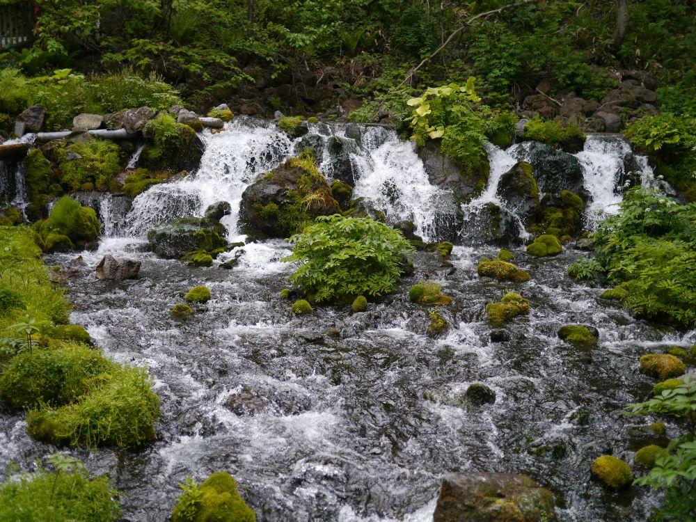 羊蹄山の湧水がいただけるパワースポット、ふきだし公園に行きましょう
