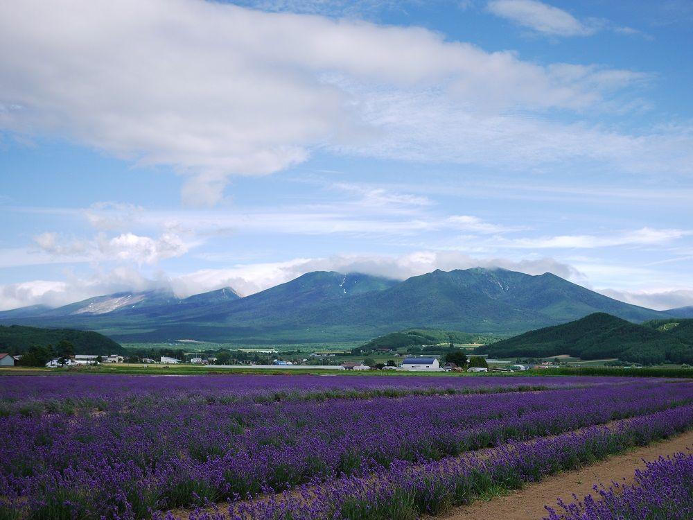 カムイミンタラ「大雪山」は、どんな所?