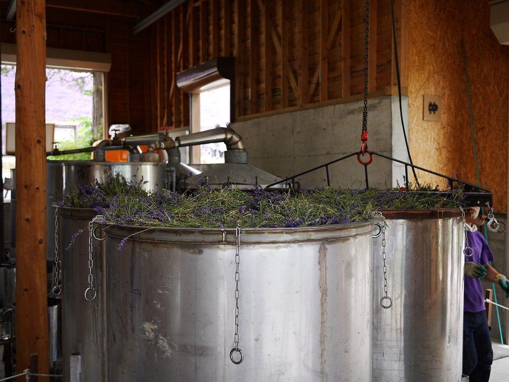 ラベンダーからオイルを抽出!「蒸留の舎」で工場見学