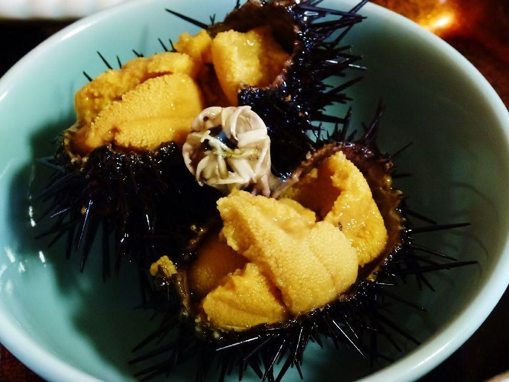 生ウニに巨大アワビ!北海道奥尻島、絶品海の幸と美しい風景