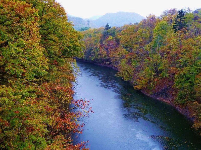 紅葉広がる森の中を歩こう!秋の「神威岳(札幌市)」登山