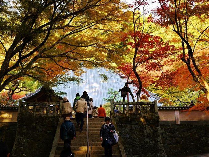 紅葉美しい香嵐渓内「香積寺(こうじゃくじ)」へお参りに