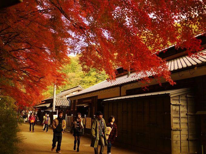 紅葉と茶屋がつくりだす美しい香嵐渓の風景