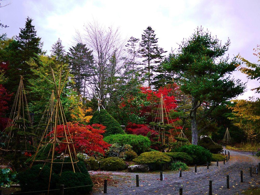 紅葉美しい小さな日本庭園、北海道長沼町「東庭園」の秋景色
