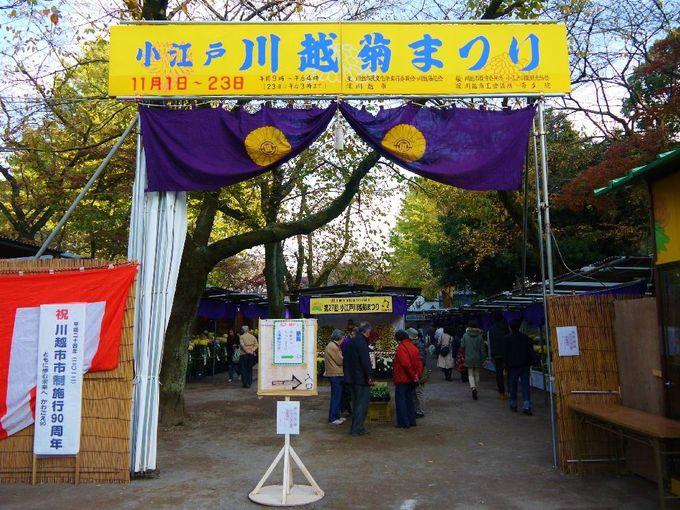 紅葉の境内で開催「小江戸川越菊まつり」