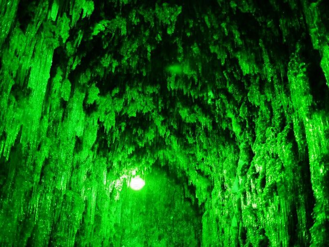 氷柱と緑が美しい「苔の洞門」