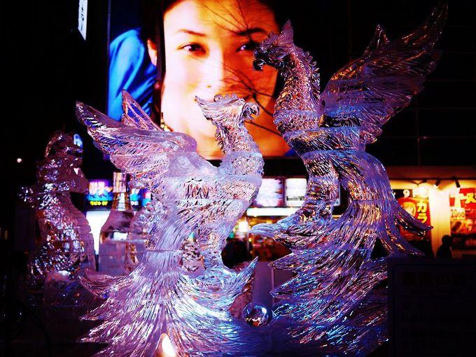 間近で見る繊細な氷の芸術に感動!