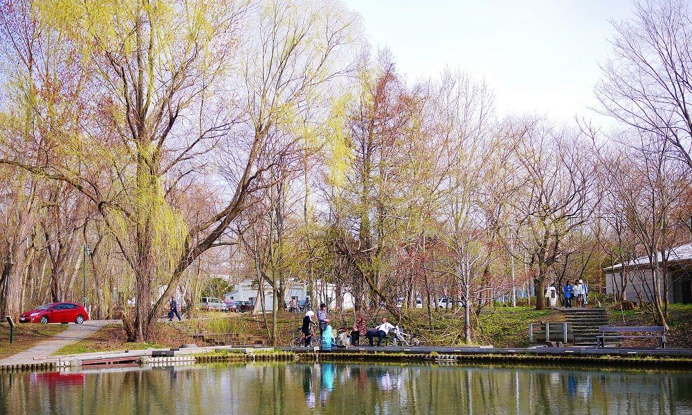早春だけの限定色!春色「北海道大学」キャンパスを楽しもう!