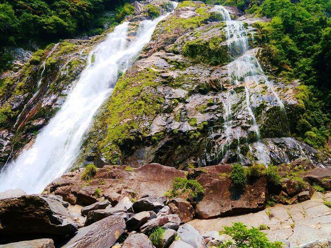 屋久島最大級の「大川(おおこ)の滝」の大迫力を間近で感じろ!