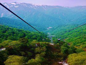 残雪と新緑の大自然美!初夏の群馬県「谷川岳ロープウェイ」