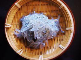 漁獲量日本一!愛知県・篠島で食べたい絶品しらす料理3選|愛知県|トラベルjp<たびねす>