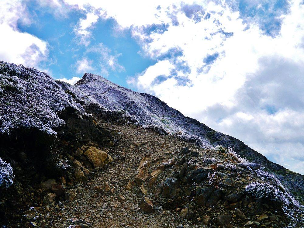 「ニペソツ山」の変化に飛んだ険しい登山道を進む