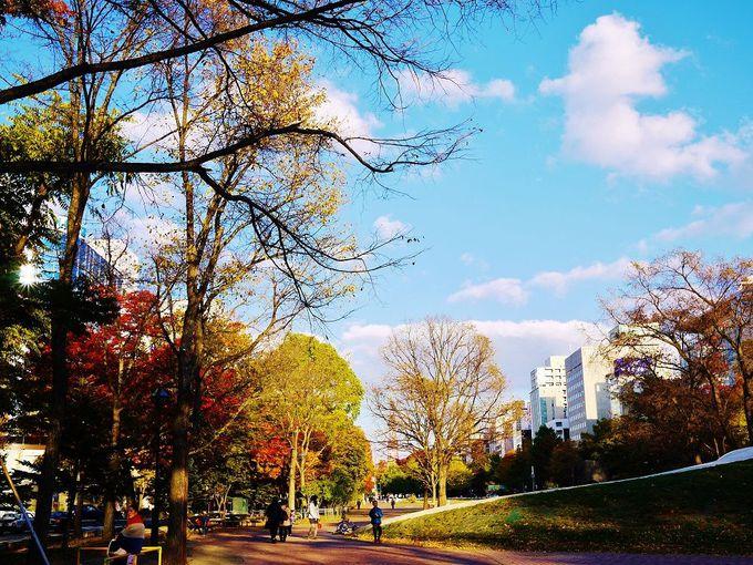 ちびっこ大集合!芸術と紅葉の中で遊べる「大通公園」