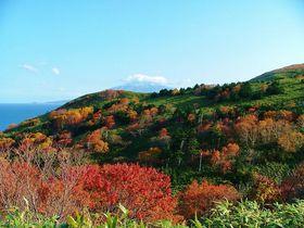 絶景と花の島を歩いて観光!秋もオススメ礼文島トレッキング|北海道|トラベルjp<たびねす>