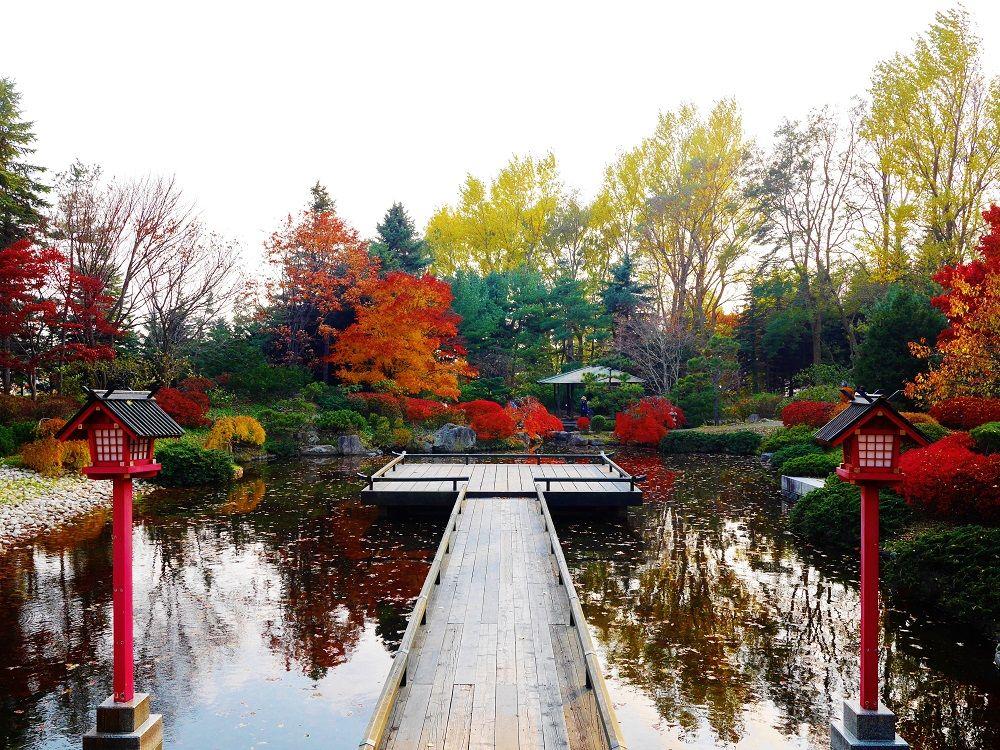 「世界の庭園」で紅葉観賞。日本庭園で感じる札幌の秋