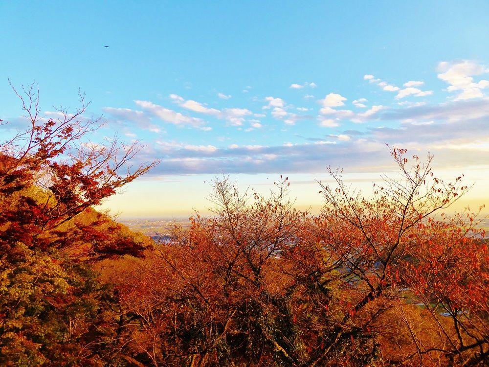 真っ赤な紅葉と関東平野の絶景!