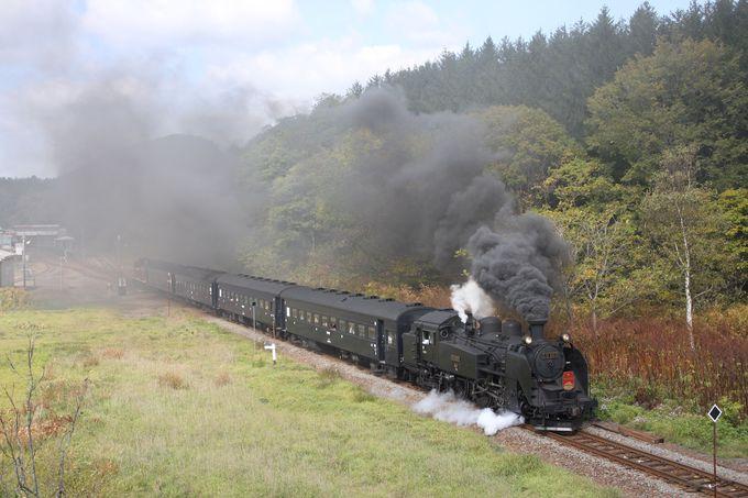 観光シーズン中は列車も増発…ユニークな臨時列車にも注目!
