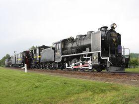 伝説のSL排雪列車「キマロキ」が眠る丘…北海道名寄公園の鉄道遺産を訪ねる|北海道|トラベルjp<たびねす>