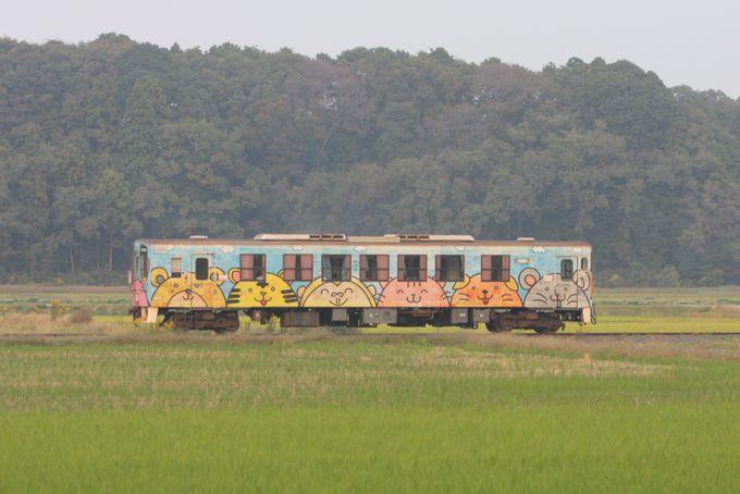 長閑な田園風景を満喫…中根駅周辺は沿線随一の撮影スポット