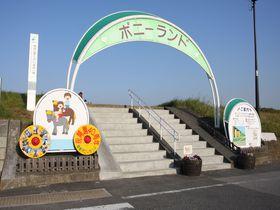 東京・江戸川区で乗馬体験~子どもは無料!篠崎ポニーランド|東京都|トラベルjp<たびねす>