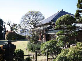 徳川の歴史遺産と絶品つけ麺!松戸「戸定が丘歴史公園」ベストコース|千葉県|トラベルjp<たびねす>