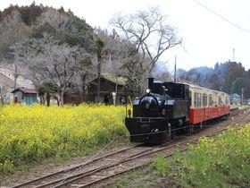 里山トロッコで房総春爛漫の旅〜小湊鐵道乗り撮り歩き