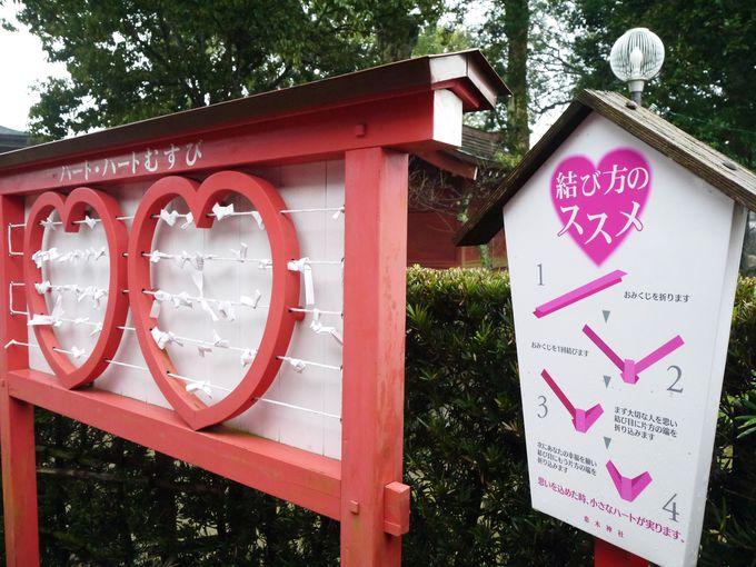 恋木神社の絵馬は99%恋愛祈願