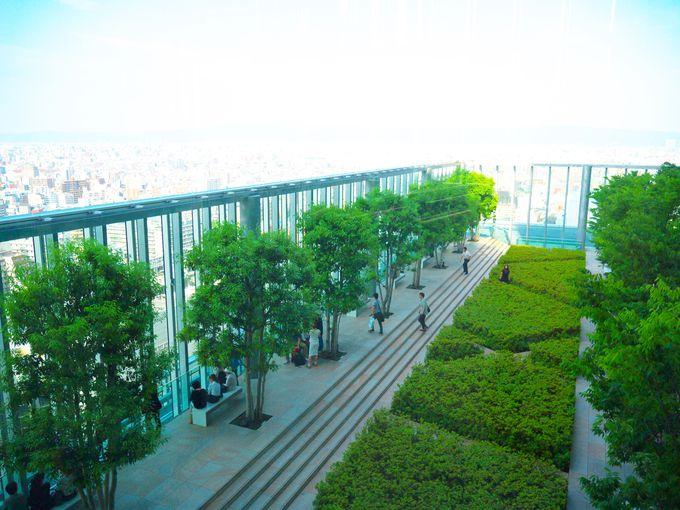日本一の超高層ビル「あべのハルカス」で空と街を見はるかす
