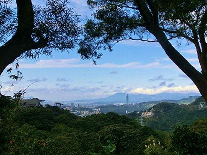 台北市内を一望
