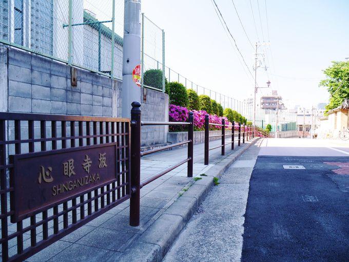 『真田丸』の場所はどこ?最新の有力説を辿る大阪玉造歴史散策
