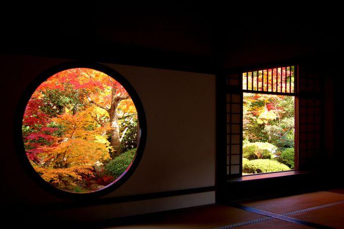 JR東海の2014年CM「そうだ 京都、行こう。」に登場で人気が続く「源光庵」