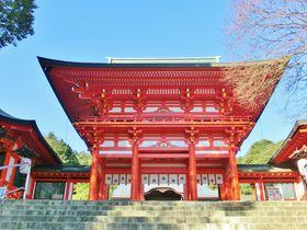 映画ちはやふるロケ地聖地巡礼・滋賀近江神宮は「真っ赤やよ」