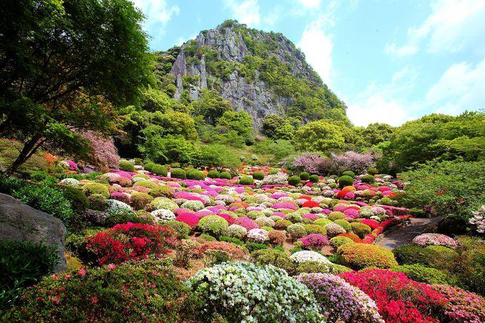 どの季節も美しい!武雄領主の大庭園「御船山楽園」
